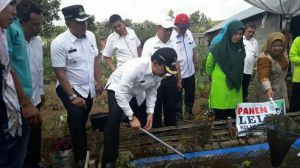 Menjadi Wakil Jambi Tingkat Nasional, Bupati Tinjau Persiapan Desa Mekar Sari