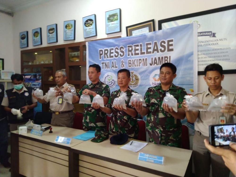 TNI AL Lanal Palembang Gagalkan Penyelundupan  Baby Lobster Senilai Rp19,5 M