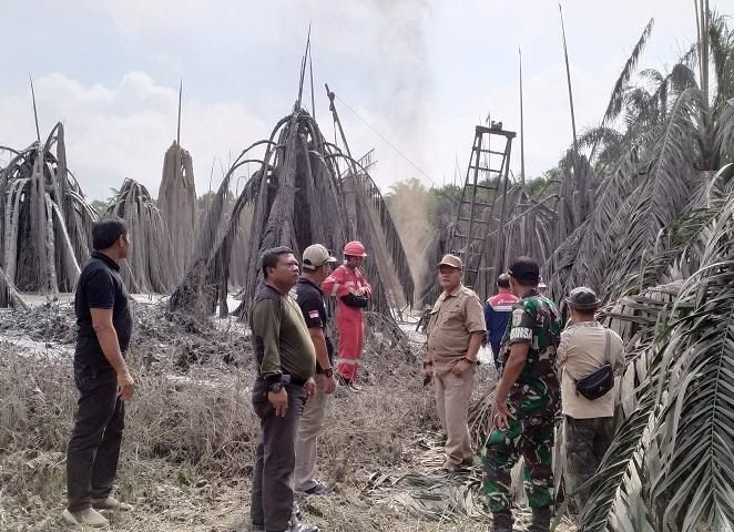 Foto Akibat Pengeboran Minyak Ilegal Kebun Sawit Milik Warga di Muba Rusak Rusak Parah