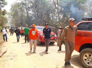 25 Hektar Tahura Terbakar  Tanjabtim damn Tanjab Barat  Diselimuti Kabut Asap
