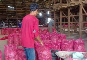 Stabilkan Harga, Kementan Pasok Bawang Merah ke Daerah Non-Sentra