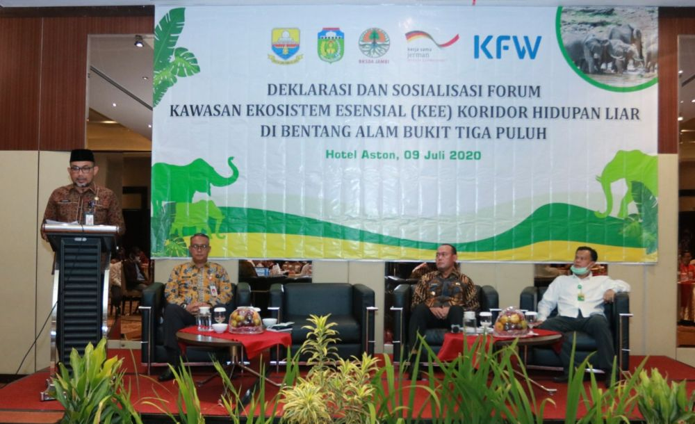 Pemprov Jambi Dukung Konservasi Habitat Gajah Sumatera
