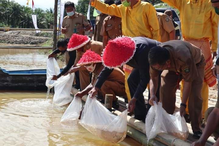 Bupati H Mashuri bersama para pejabat darah menabur benih ikan di lokasi agro edu wisata, Dusun Tirta Mulya, Kecamatan Pelepat Ilir baru-baru ini.(photo diambil sebelum yang bersangkutan cuti).
