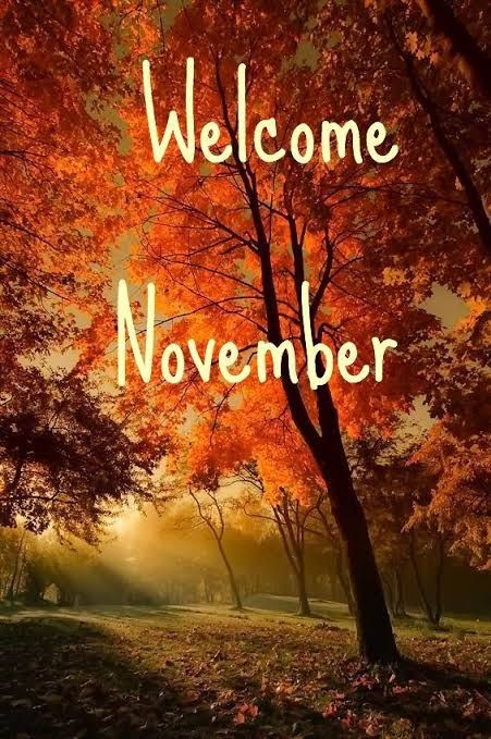 Welcome November, Intip Nasib dan Keberuntungan 12 Zodiak