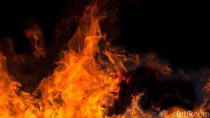 Tragis! Sepuluh Bayi Tewas Akibat Kebakaran di Rumah Sakit India
