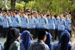 Pendaftaran CPNS Dibuka April, Pemprov Ajukan 600 Formasi