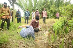 Bupati Tanjabbar Tinjau Lahan Warga Terdampak Banjir