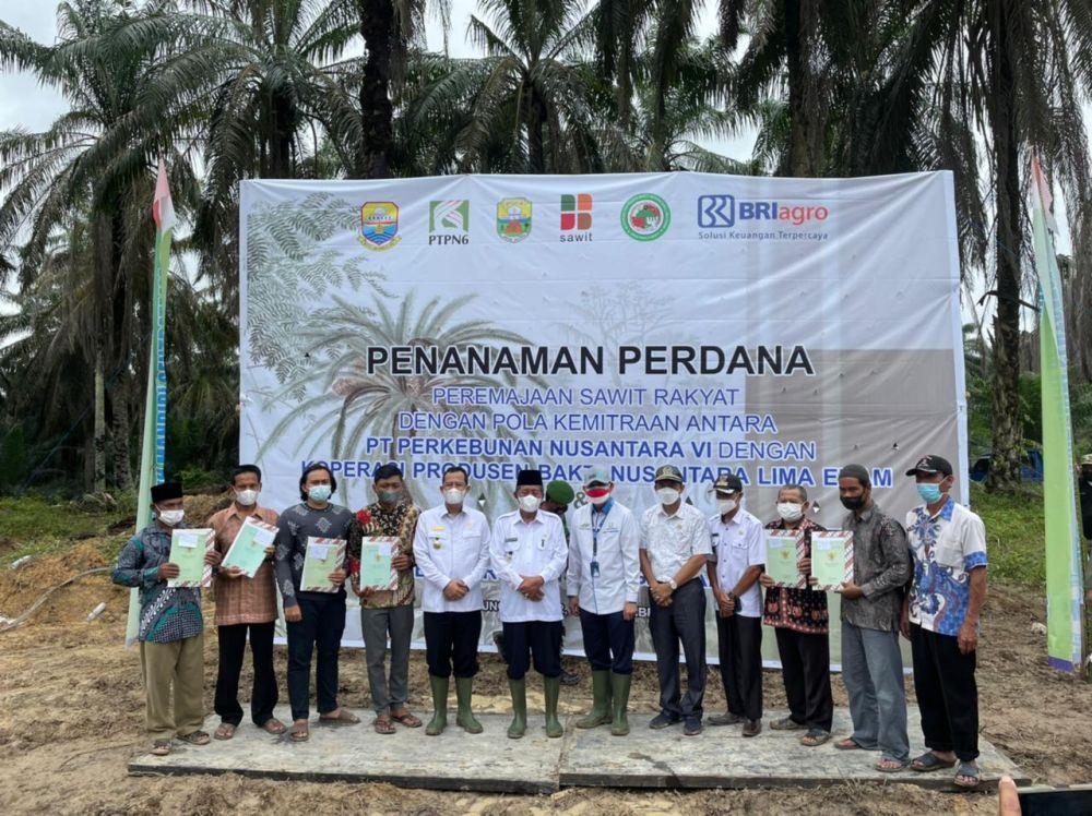 Dihadiri Wagub, PTPN VI Gelar Penanaman Peremajaan Sawit Rakyat Gandeng Koperasi